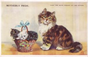 Tabby & White Persian Kitten Cat Motherly Pride Old Cats Postcard