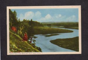 NS Salmon River Bible Hill Truro Nova Scotia Canada Carte Postale Postcard