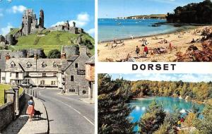 Dorset Corfe Village and Castle Ruins, Studland Beach and The Blue Pool