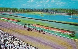 Florida Hialeah Thrilling Race At Hialeah Race Course Horse Racing
