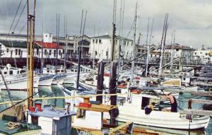 CA - San Francisco, Fisherman's Wharf
