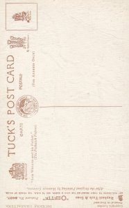 Dickens' Characters , 00-10s , Sam Wheeler & His Father ; TUCK 3407