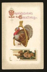 Postmark 1910 Grassy Lake Alta Canada Thanksgiving Greeting Embossed Postcard
