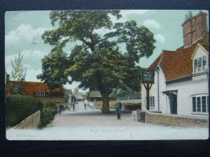 Hampshire NEW FOREST West Meon THE NEW INN c1905 Postcard by F.G.O. Stuart