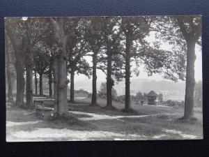 Kent ROYAL TUNBRIDGE WELLS The Queens Grove showing Shelter c1930 RP Postcard