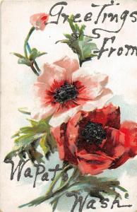 F32/ Wapato Washington Postcard c1910 Greetings from Wapato