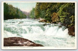 Adirondack Mountains New York~Raquette Falls~#6803 c1910 Detroit Pub Co Postcard