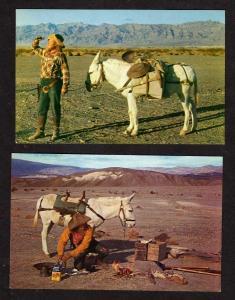 Lot 2 Prospectors Postcards Mule Donkey Bad Water Bill