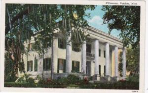 Mississippi Natchez D'Evereaux Curteich