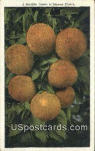 Cluster of Oranges Misc FL Writing on back