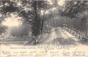Entrance to Bridge Cochecton NY 1906
