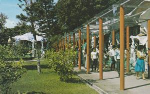 Haw Par Villa , SINGAPORE , 50-60s #2