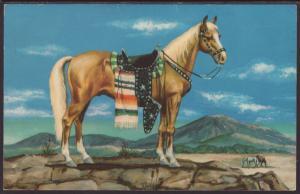 Plaomino Stallion Postcard