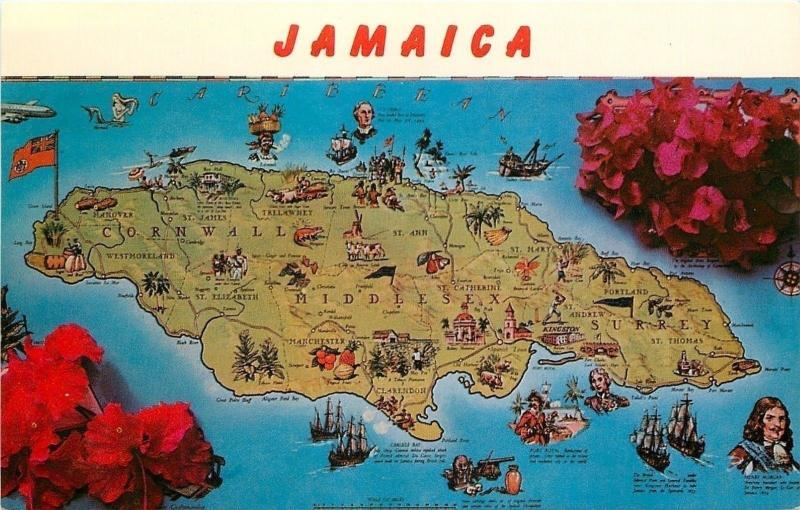 Jamaica~Caribbean Islands~Map Postcard~Middlesex~Cornwall~Cows~Fruit~1950s PC