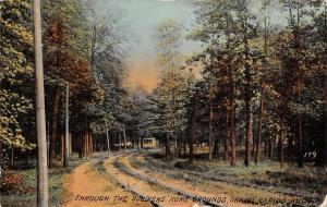Grand Rapids Michigan~Interurban Trolley Thru Soldiers' Home Grounds~1912 PC