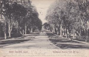 NEW HAVEN , Connecticut, PU-1910; Hillhouse Avenue from Bridge