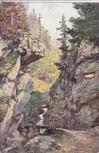 Eingang in die Steinwandklamm, Lower Austria, 00-10s
