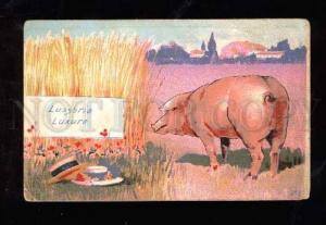 014126 Pink PIG & Lovers in Grass Vintage colorful PC