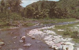 SAINT LUCIA , 50-60s : Washing day in the village of CANARIES