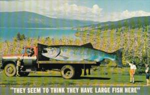 Canada Exageration Large Trout On Back Of Truck British Columbia Fisherman's ...