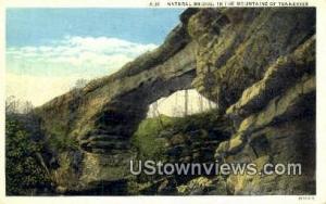 Natural Bridge -tn_qq_1139