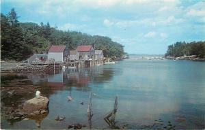 New Harbor Maine~Back Cove~Fish Shacks~Lady Fishing on Rock~1950s Postcard