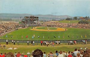 Howard J. Lamade Memorial Field, Penna, USA Base Ball Stadium , Post Card Unused