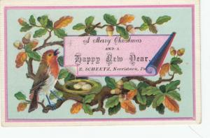 TC; NORRISTOWN, Pennsylvania, 1890s; R.Scheetz, Merry Christmas & Happy New Year