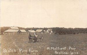 G33/ Paullina Iowa RPPC Postcard c1910 A. Meltvedt Scotch Pine Farm Horses
