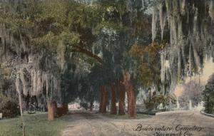 SAVANNAH , Georgia , 1900-10s ; Bonaventure Cemetery