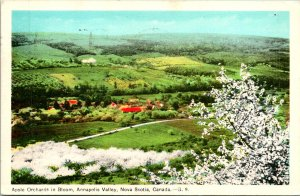 Nova Scotia Canada Apple Orchards Annapolis Valley Postcard used (25602)
