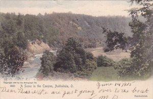 A Scene In The Canyon Ashtabula Ohio 1905