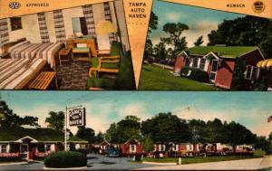 Florida Tampa Auto Haven