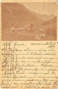 WEISSTANNEN St. Gallen, Switzerland Alpenhof 1899 Vintage Postcard