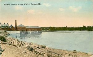 Bangor Maine Salmon Pool Water Works Priest C-1910 Postcard 5570
