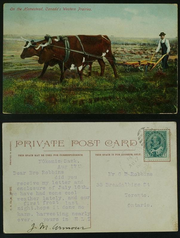 On the homestead Oxen tilling Nokomis  Alta duplex 1910