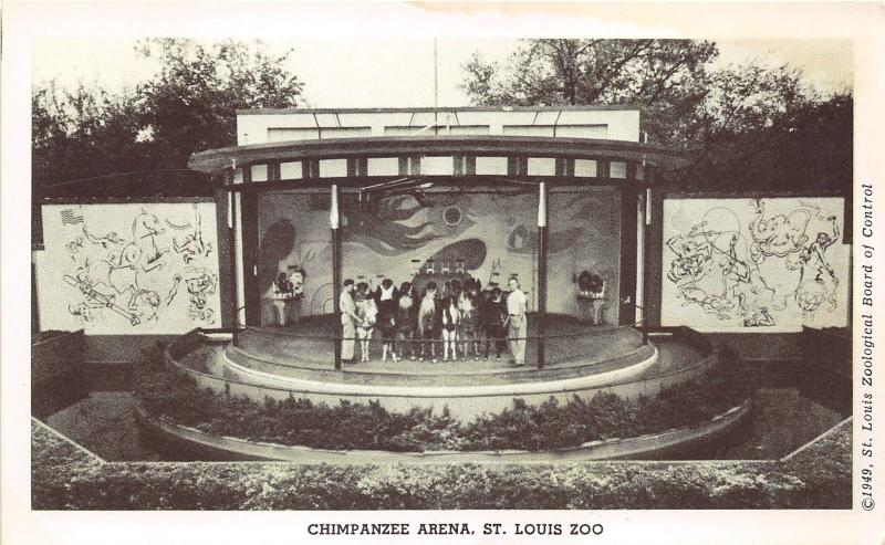 St Louis Missouri Zoo~People Viewing Chimpanzee Arena from Glass Lobby~1949 PC