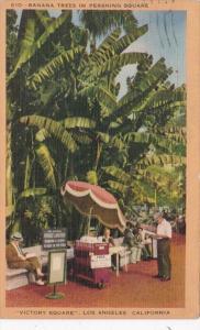 California Los Angeles Banana Trees In Pershing Square 1943