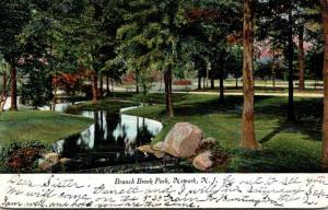New Jersey Newark Branch Brook Park 1905
