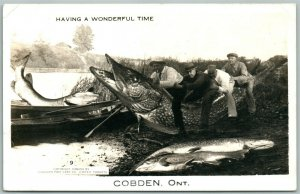 COBDEN ONT. CANADA FISHING EXAGGERATED ANTIQUE REAL PHOTO POSTCARD RPPC