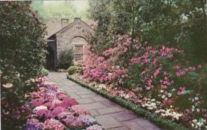 Alabama Mobile Path To Bellingrath Home Bellingrath Gardens