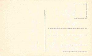 Aleksandrova Ulica Street Osijek Croatia 1910c #2 postcard