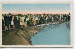 Drawing the Seine Net Fishing Isle Palms Charleston South Carolina postcard