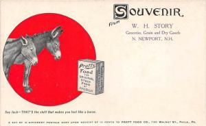 New Hampshire N. Newport , W.H. Story Grocery Store , Mules reading ,  Souven...
