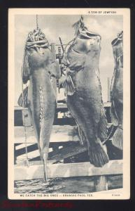 ARANSAS PASS TEXAS 2000 JEWFISH FISHING ANTIQUE VINTAGE POSTCARD FISH