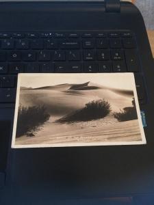 Vintage Postcard: Dunes of the Desert