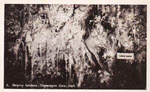 RP: TIMPANOGOS CAVE, Utah, 30-50s; Hanging Gardens