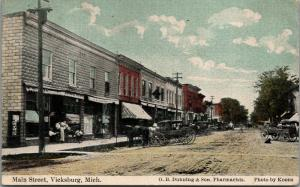 Vicksburg Michigan~Main Street~Ladies at Restaurant~Dunning & Son~Buggies~1910