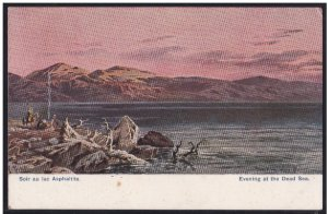 Evening at The Dead Sea Color Postcard - Israel Palestine