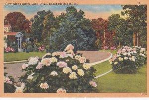 REHOBOTH BEACH , Delaware , 30-40s ; View along Silver Lake Drive